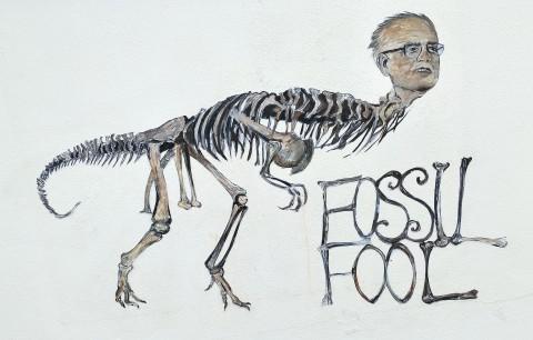 FOSSIL FOOL No.1